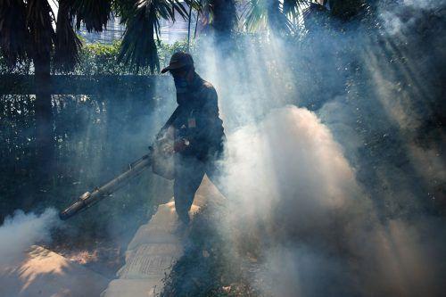 In Havanna wurde die letzten Jahre mit Insektenmittel gegen Moskitos vorgegangen. Das darin enthaltene Nervengift gilt als Ursache für die rätselhaften Beschwerden. reuters
