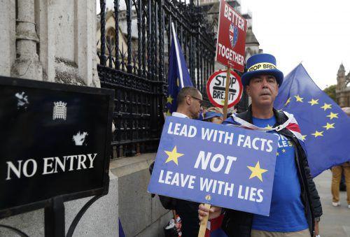 Kein Tag vergeht ohne Demonstrationen von Brexit-Gegnern vor dem Parlament in London. ap