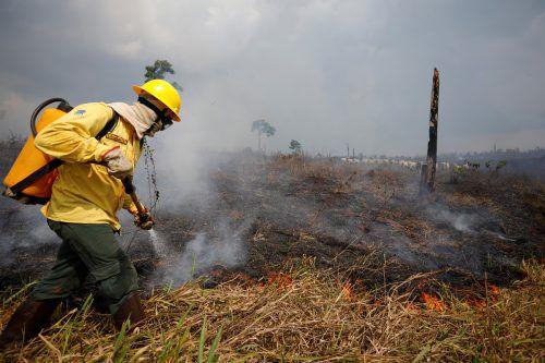 Tausende Feuerwehrleute stehen im Dauereinsatz. Reuters