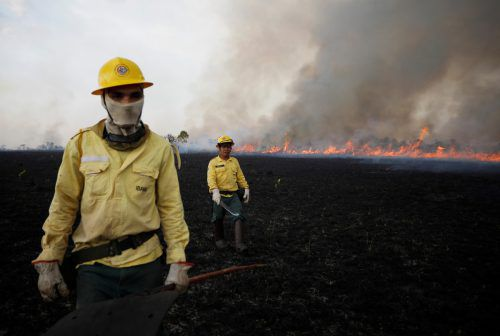 Viele Helfer versuchten das Feuer im Amazonas unter Kontrolle zu bringen. Reuters