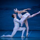 Ballettklassiker in Bregenz