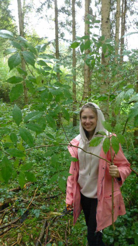 Alle waren engagiert bei der Arbeit im Wald dabei.