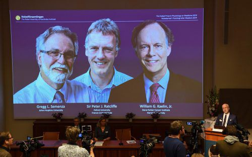 Am Karolinska-Institut wurden die drei Preisträger bekannt gegeben. AFP