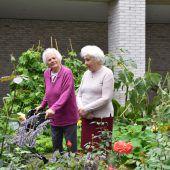 Kleine bunte Oase im Pflegeheim Birkenwiese