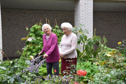 An dem neu angelegten bunten Garten können sich die Bewohner des Pflegeheims Birkenwiese erfreuen.