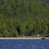 Müll setzt Baikalsee zu