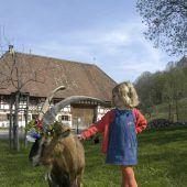 Entdecker-Tour auf dem Bauernhof
