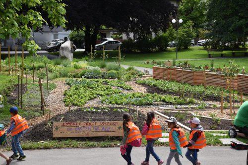 Die Essbare Stadt Dornbirn versteht sich als Garten für alle.
