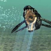 Erster Pliosaurier in Österreich entdeckt