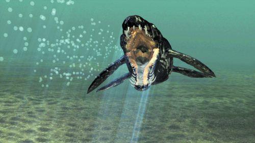 Die Pliosaurier zählen zur Gruppe der Flossenechsen (Sauropterygia). APA