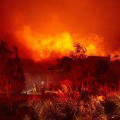Waldbrände in Kalifornien: 1,2 Millionen Menschen ohne Strom