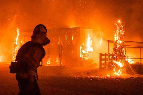 Feuerwehrleute kämpfen weiter gegen die Flammen. Die Waldbrände im Norden und im Süden Kaliforniens treiben viele Menschen in die Flucht. AFP