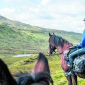 Ein Traum für Pferdefreunde