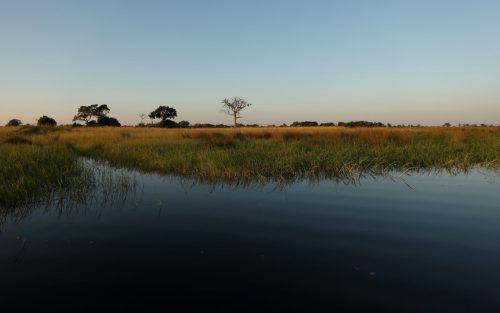Homo sapiens sapiens habe vor 200.000 Jahren im Okavango-Delta gelebt. Reuters