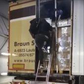 Flüchtlinge knackten Laster aus Vorarlberg