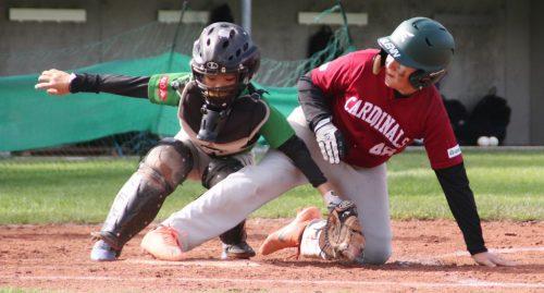 Spannung, Action und Spaß standen am vergangenen Wochenende bei der österreichischen Baseball Meisterschaft im Vordergrund.bsc feldkirch