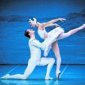 St. Petersburg Festival Ballet zeigt berühmte Tanzmärchen