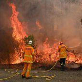 Buschbrände außer Kontrolle: Australien ruft Notstand aus