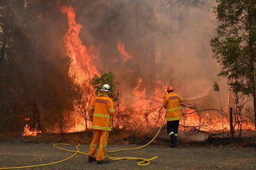 20 Feuerwehrleute wurden beim Löschen der Brände verletzt. AFP
