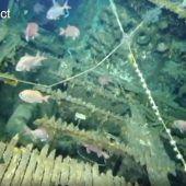 Vermisstes US-U-Boot aus Zweitem Weltkrieg entdeckt