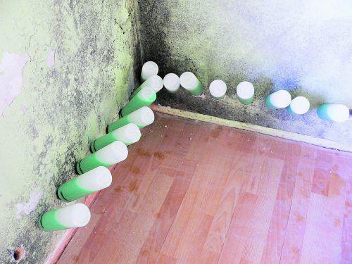 Aufsteigender Feuchtigkeit wird ein Riegel vorgeschoben, das Mauerwerk kann austrocknen. Fotos: Veinal.at