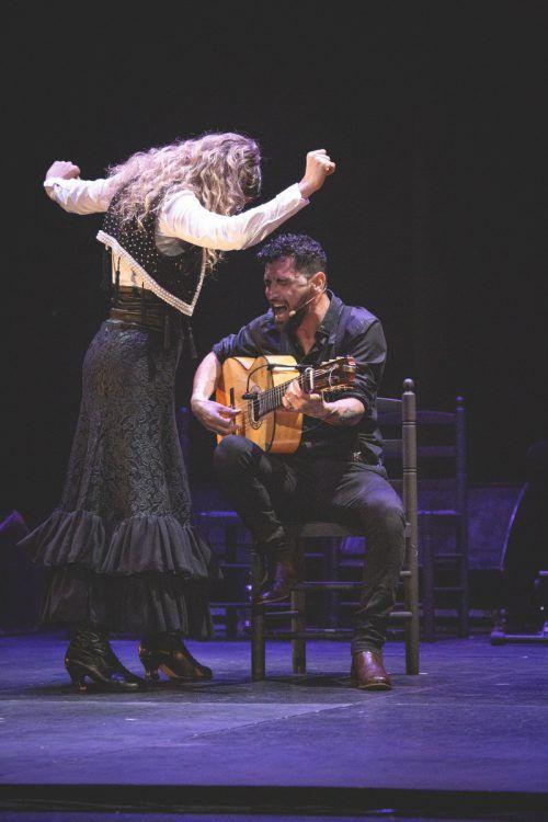 Beim Flamenco Festival wird bewegt, berührtund begeistert. morales/Chico/G. M. Obeso
