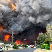 Buschfeuer außer Kontrolle