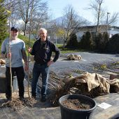 Stadt fördert weiter Hochstammbäume