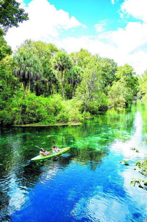 Der Silver Springs State Park ist bekannt für sein glasklares Wasser und die einmalige Unterwasserwelt. Beate Rhomberg (4)