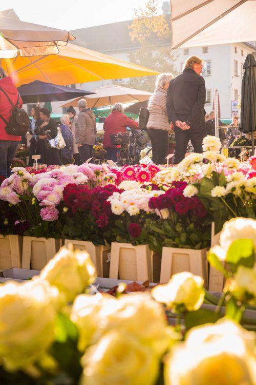 Der Wochenmarkt muss dem Christkindlemarkt Platz machen. Stadt