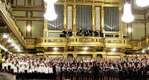 """Die """"Chor:Sinfonie"""" mit Beiträgen aus allen Bundesländern wurde im Großen Saal des Wiener Musikvereins aufgeführt. chorverband"""