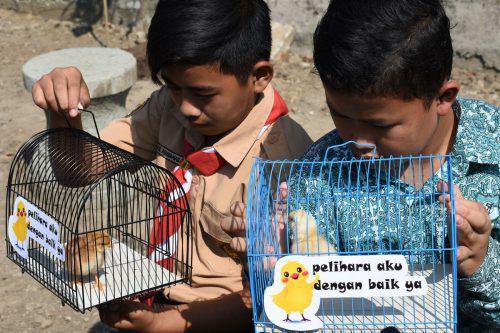 Die Kinder sollen lernen, Tiere zu lieben und Verantwortung zu übernehmen. afp