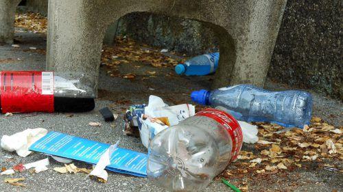 Die Kosten für Litterung betragen in Bregenz im Jahr rund 200.000 Euro.