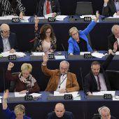 EU-Parlament ruft Klimanotstand aus