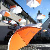 Feldkirch-überdacht-Schirme gesucht