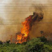 Brände bedrohen riesiges Sumpfgebiet