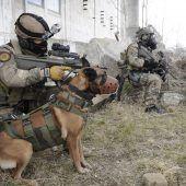 Tödliche Hundebisse beim Heer: Das Ziel ist Aufklärung