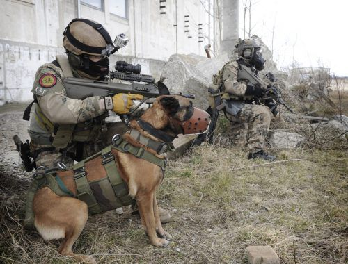 Jagdkommando-Soldaten des Bundesheeres mit Hund. Symbolbild, APA