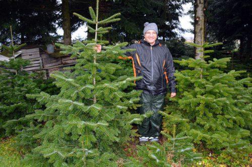 Johannes Vollmar aus Höchst ist einer von rund 30 Christbaumproduzenten in Vorarlberg. Landwirtschaftskammer