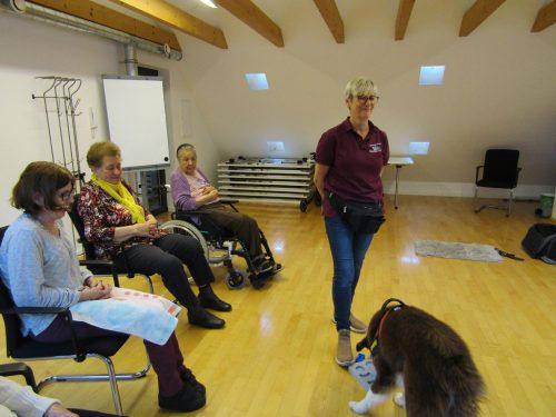 Therapiehund Lilli kam mit seiner Hundeführerin Astrid Dörler zu Besuch.mohi rankweil