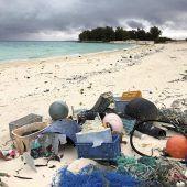 Plastikteppich bedroht Seevögel