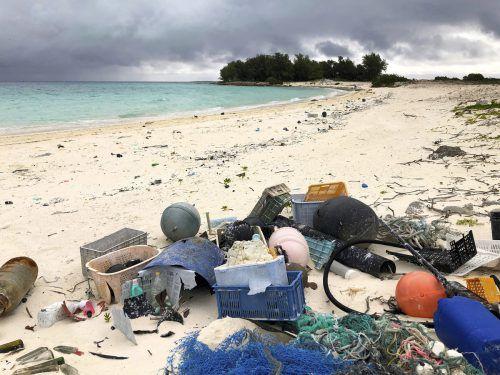Tiefblaues Wasser, weiße Sandstrände – die Midwayinseln gelten als Paradies für Seevögel. Doch das Plastik erreicht auch das abgelegene Atoll und schadet der Albatros-Kolonie. ap