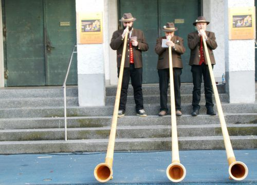 Alphornbläser aus Krumbach spielten vor der Kirche.