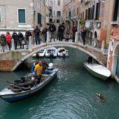 Venedigs Gondolieri auf Müll-Tauchgang
