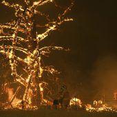 Wettlauf gegen die Zeit bei Buschbränden