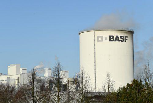 Brandenburg hofft auf eine BASF-Batteriefabrik. reuters