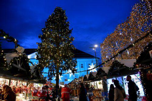 Der geschmückte Baum ist das Symbol der Weihnachtszeit schlechthin und gehört seit dem 19. Jahrhundert zu unserem Weihnachtsfest dazu. APA