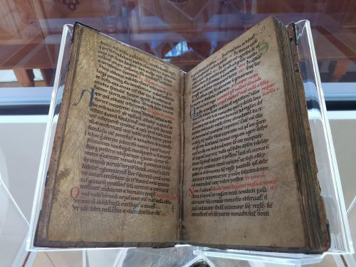 Die Carta Caritatis ist im Grunde eine hochmoderne Verfassung, das Dokument wird am 23. Dezember 2019 900 Jahre alt. Hildegard Brem