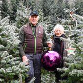 Hans und Olga Schwendinger züchten heimische Christbäume. A10
