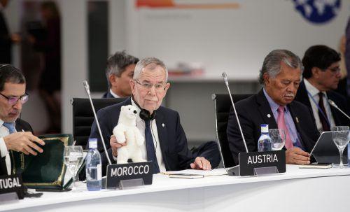 Für seine Rede in Madrid brachte der Bundespräsident einen Kuscheleisbären mit. APA